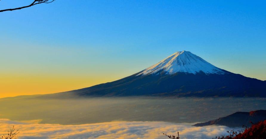 日本は外国人の賞金から源泉徴収税を考慮します