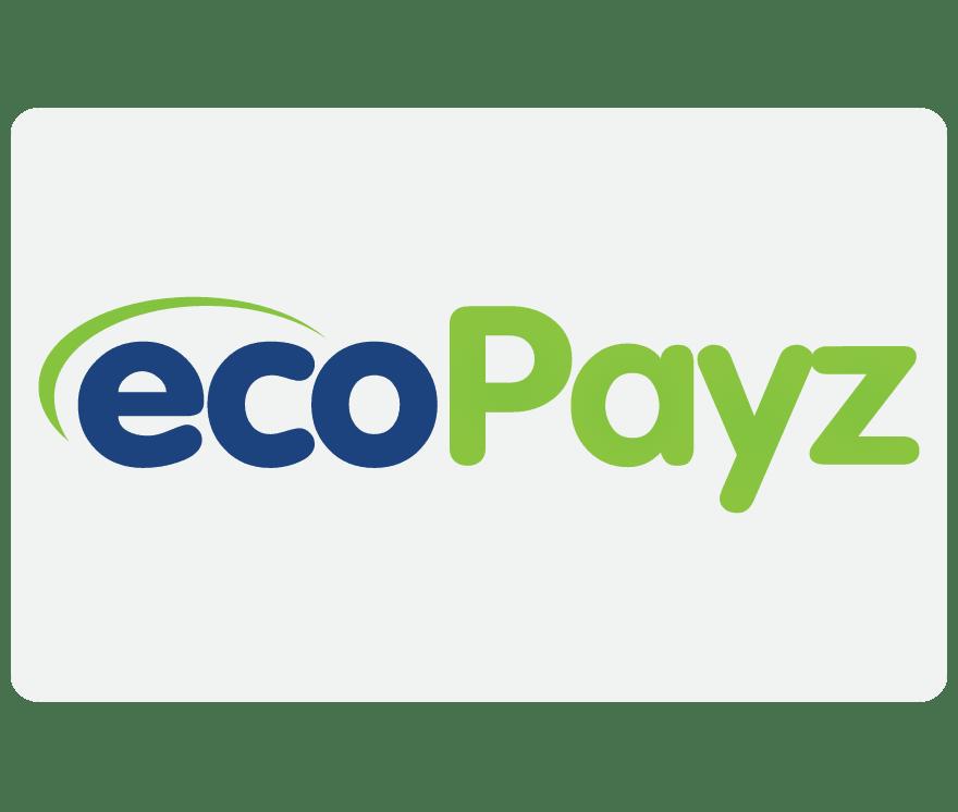 オンラインカジノ EcoPayz